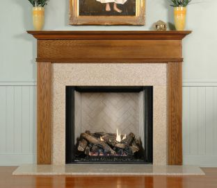 PROPANE FIREPLACES | NAPOLEON FIREPLACE | NATURAL GAS